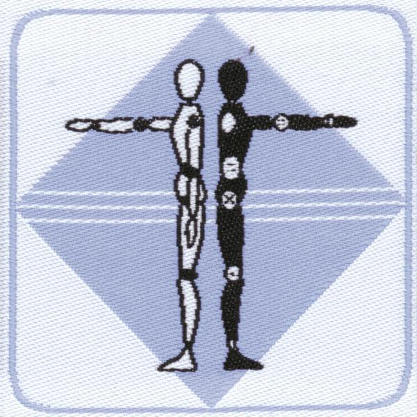 Distintivo brevetto di competenza animazione sportiva